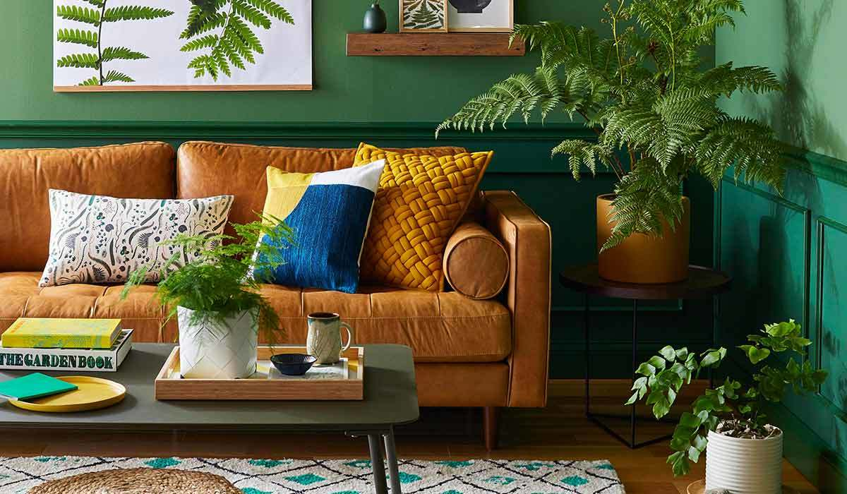Leather couch with pillows and a fern on a side table photo