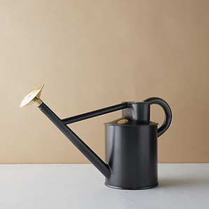 Black traditional watering can from Terrain photo