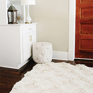 Shag rug and ottoman from Walmart. photo