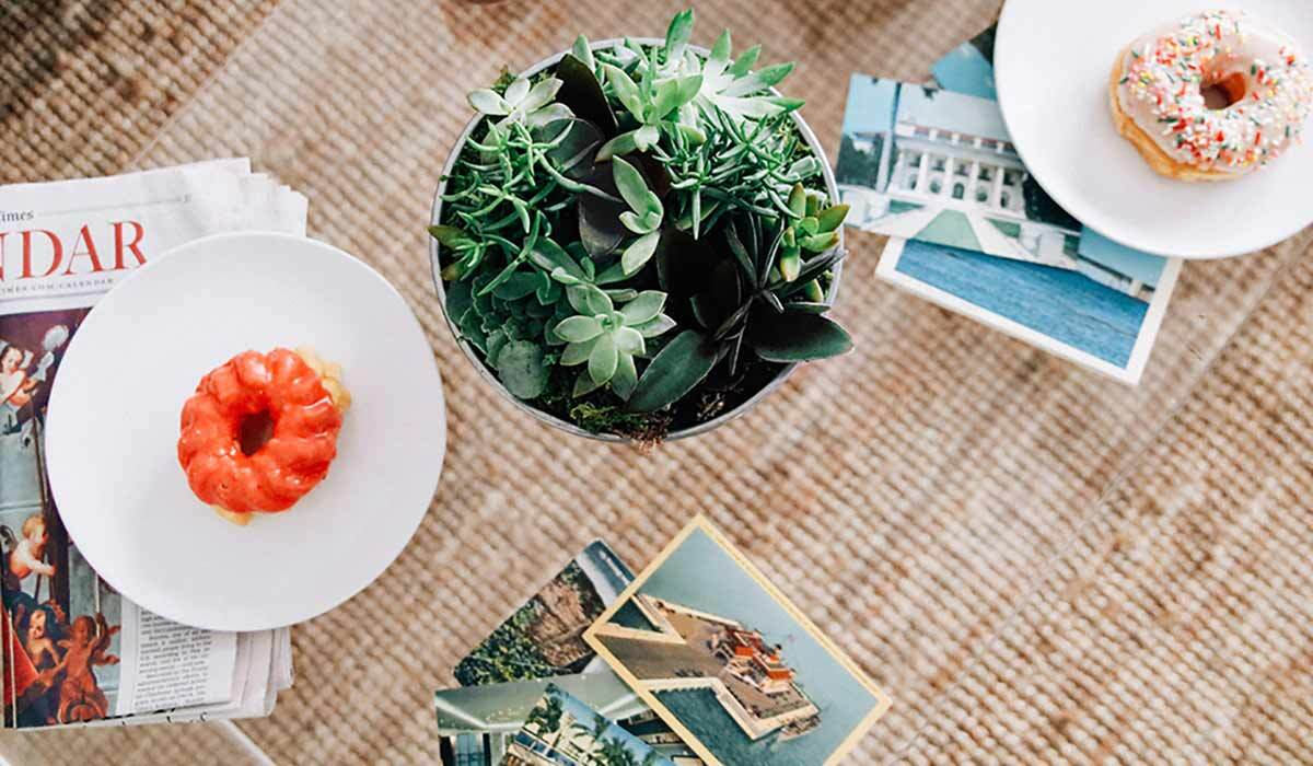 A plant sits on a table with photographs, a newspaper, and a donut.