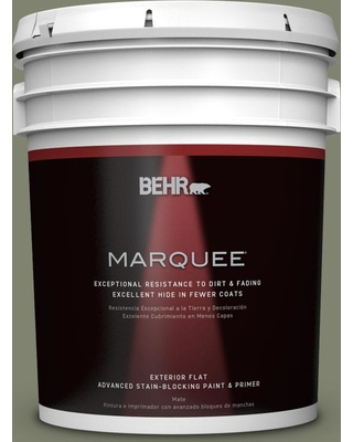 BEHR MARQUEE 5 gal. #PPU10-18 Lizard Green Flat Exterior Paint and Primer in One