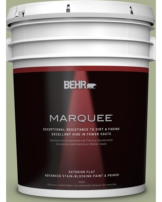 BEHR MARQUEE 5 gal. #PPU10-06 Spring Walk Flat Exterior Paint and Primer in One