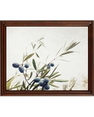"""Olive Branches Paper Print by Lupen Grainne, 20 x 16"""", Ridged Distressed, Espresso, No Mat"""