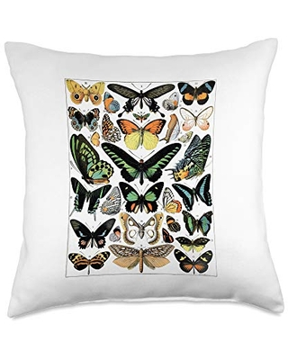 Butterflies Butterfly Collection Vintage Entomology Chart Throw Pillow, 18x18, Multicolor