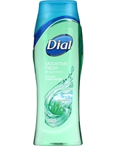 Dial Body Wash, Mountain Fresh with All Day Freshness, 16 Fluid Ounces (Pack of 6)