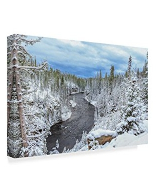 Trademark Fine Art 'Yellowstone Winter In Fall' Canvas Art by Galloimages Online