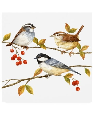 Trademark Fine Art 'Birds And Berries I' Canvas Art by Jane Maday