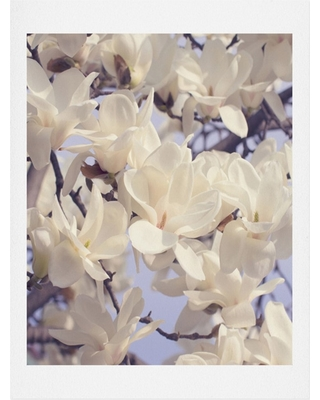 Catherine Mcdonald Asian Magnolias Art Print - Deny Designs, Origami White