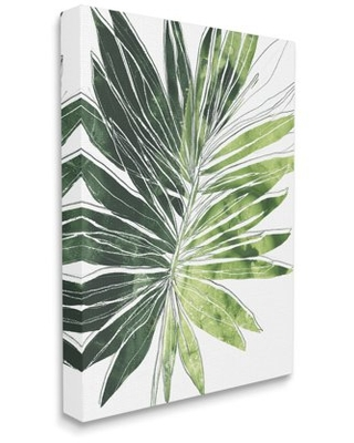 Stupell Industries Green Pop Palm Leaves Expressive Linework Canvas Wall Art, 30 x 40, Design by June Erica Vess