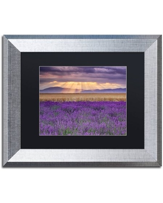 "Trademark Fine Art ""Lavender Sunbeams"" Canvas Art by Michael Blanchette Photography Black Matte, Silver Frame"