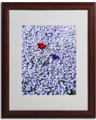 "Trademark Art 'One Red Tulip' Framed Photographic Print on Canvas KS532 Size: 20"" H x 16"" W x 0.5"" D Frame Color: Brown"