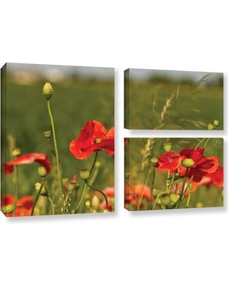 ArtWall '3114A' by Lindsey Janich 3 Piece Photographic Print on Wrapped Canvas Set 0jan029g2436w