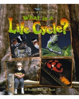 What Is a Life Cycle? (Science of Living Things (Paperback))