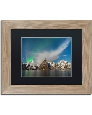 "Trademark Fine Art 'Plumes' Framed Photographic Print on Canvas ALI3810-T1 Size: 11"" H x 14"" W x 0.5"" D Matte Color: Black"