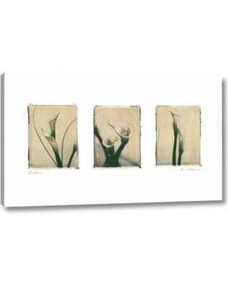 """World Menagerie 'Lilies' by Amy Melious Giclee Art Print on Wrapped Canvas BI098818 Size: 19"""" H x 32"""" W x 1.5"""" D"""