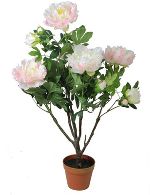 """36"""" Potted Light Peach and Pink Artificial Blooming Peony Flower Plant"""