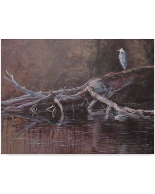 """Trademark Art 'Great Blue' Graphic Art Print on Wrapped Canvas ALI33021-CGG Size: 14"""" H x 19"""" W x 2"""" D"""