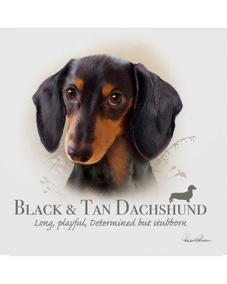 "Trademark Art 'Black and Tan Dachshund' Graphic Art Print on Wrapped Canvas ALI24037-C Size: 24"" H x 24"" W x 2"" D"
