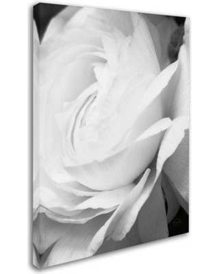 """Trademark Art 'Black and White Petals II' Photographic Print on Wrapped Canvas WAP01306-C Size: 24"""" H x 18"""" W"""