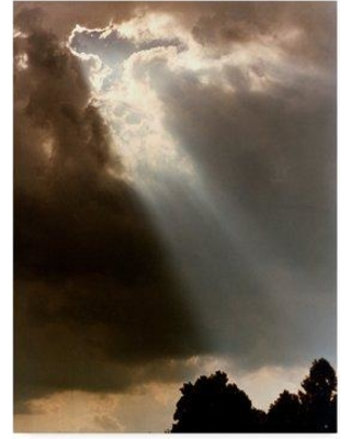 "Ebern Designs 'Sunray' Photographic Print on Wrapped Canvas EBRN2046 Size: 32"" H x 24"" W x 2"" D"