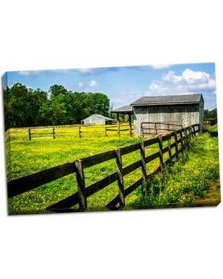 Millwood Pines 'Spring Pasture II' Photographic Print on Wrapped Canvas BI055727