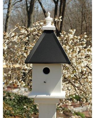 Wooden Expression Birdhouses Manor 19 in x 9 in x 9 in Birdhouse DL43 Color: Black
