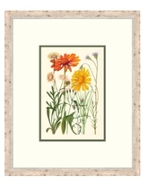 """Cottage Flowers Iv Framed Giclee Wall Art - 21"""" x 25"""" x 2"""""""
