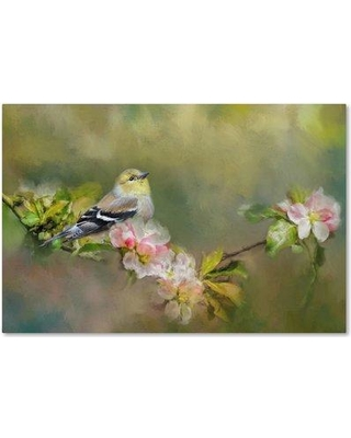 """Trademark Art 'Goldfinch in the Garden' Print on Wrapped Canvas ALI14948-C Size: 12"""" H x 19"""" W"""