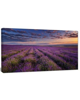 "Design Art 'Dark Lavender Field w/ Cloudy Sky' Photographic Print on Wrapped Canvas, Canvas & Fabric in Brown/Purple, Size 28"" H x 60"" W 