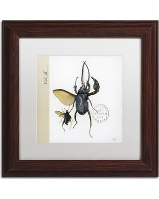 """Trademark Art """"Morph Insects"""" by Nick Bantock Framed Graphic Art ALI2208-W1616MF / ALI2208-W1111MF Size: 11"""" H x 11"""" W x 0.5"""" D"""