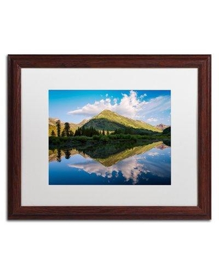 """Trademark Fine Art Wings Framed Photographic Print on Canvas ALI3910-W1 Matte Color: White Size: 16"""" H x 20"""" W x 0.5"""" D"""
