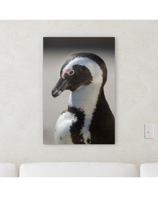 "World Menagerie 'Animal Portrait (65)' Photographic Print on Canvas BI100774 Size: 21"" H x 7"" W x 2"" D"