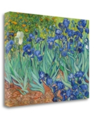 """Tangletown Fine Art Irises 1889 by Vincent Van Gogh Giclee Print on Gallery Wrap Canvas, 24"""" x 18"""""""