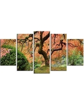 New Deal On Design Art Old Japanese Maple Tree Landscape 5 Piece Photographic Print On Wrapped Canvas Set Canvas Fabric In Orange Green Size Medium 25 32