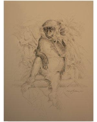 """World Menagerie 'Monkey Line Drawing' Acrylic Painting Print on Wrapped Canvas WRME2863 Size: 47"""" H x 35"""" W x 2"""" D"""