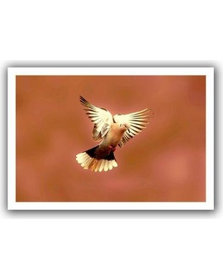 """ArtWall 'Pink Dove1' by Lindsey Janich Photographic Print on Rolled Canvas 0jan041-12x18 Size: 16"""" H x 22"""" W"""