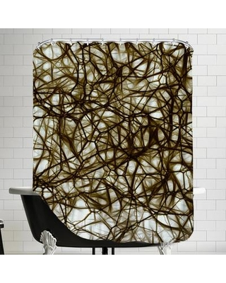 East Urban Home Modern Healthy Neurons Nerve Cell Biology Single Shower Curtain ESRB1013 Color: Brown