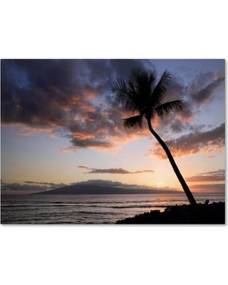 "Trademark Fine Art 'Palm Tree Maui' by Pierre Leclerc Framed Photographic Print on Wrapped Canvas PL0058-C Size: 22"" H x 32"" W x 2"" D"
