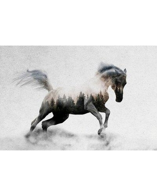 "East Urban Home 'Hest I' Graphic Art Print on Canvas ESUR6809 Size: 18"" H x 26"" W x 1.5"" D"
