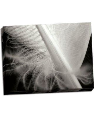 Ebern Designs 'Feather I' Photographic Print on Wrapped Canvas BF046272