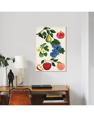 """East Urban Home 'Fruit Collection I' Graphic Art Print on Canvas ESUI2365 Size: 18"""" H x 12"""" W x 0.75"""" D"""