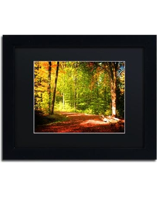 """Trademark Art 'Breaking the Fall Silence' by Philippe Sainte-Laudy Framed Photographic Print PSL0902-B1 Mat Color: Black Size: 11"""" H x 14"""" W x 0.5"""" D"""