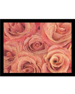 "Buy Art For Less 'Roses Are Pink' by Marilu Windvand Framed Photographic Print IF MW1423 Size: 18.5"" H x 22.5"" W x 1.25"" D Frame: Black"