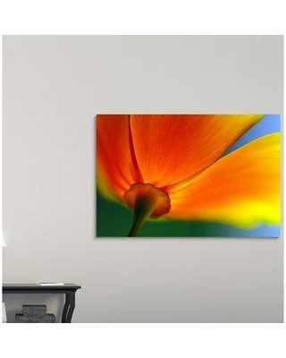 "Ebern Designs 'Summer' Photographic Print on Canvas W000599312 Size: 40"" H x 60"" W x 1.5"" D"