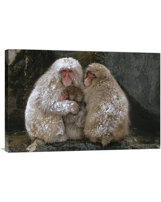 "East Urban Home 'Japanese Macaque Family Huddled Together for Warmth Japan' Photographic Print EAAC8137 Size: 16"" H x 24"" W Format: Wrapped Canvas"