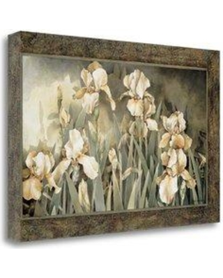 """Tangletown Fine Art 'Field of Irises' Graphic Art Print on Wrapped Canvas CA302789-2416c Size: 20"""" H x 29"""" W"""