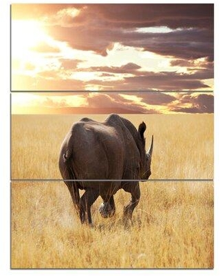 Design Art 'Giant Rhino under Bright Sky' 3 Piece Photographic Print on Wrapped Canvas Set PT12832-3PV