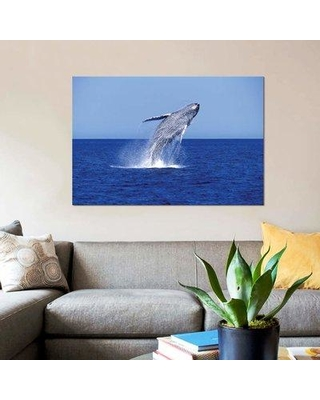 """East Urban Home 'Humpback Whale Breaching' Photographic Print on Canvas EBHR3244 Size: 18"""" H x 26"""" W x 0.75"""" D"""