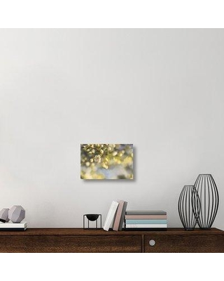 "East Urban Home 'Blush Blossoms II' Photographic Print on Canvas UBAH6239 Size: 12"" H x 18"" W x 1.5"" D"