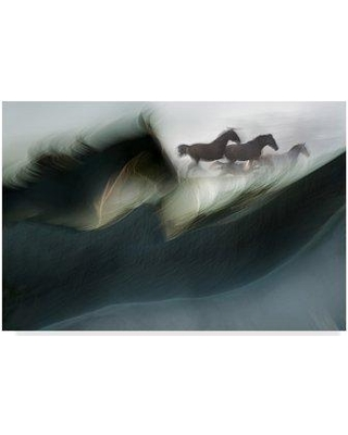 """Trademark Art 'Shadows of Power' Photographic Print on Wrapped Canvas 1X05309-CGG Size: 16"""" H x 24"""" W x 2"""" D"""